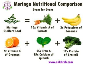 moringa nutrition comparison chart